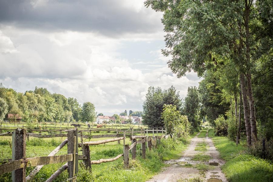 Eine rockige Landhochzeit in Bayern von Carito Fotografie.