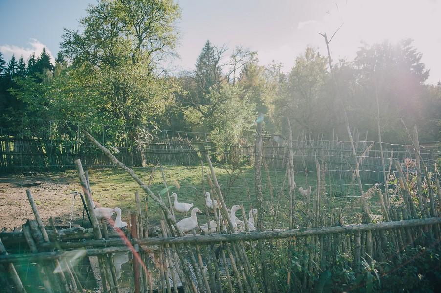 Eine pinke Hochzeit voller Inspirationen auf dem Einödhof Waldeck im Bayerischen Wald