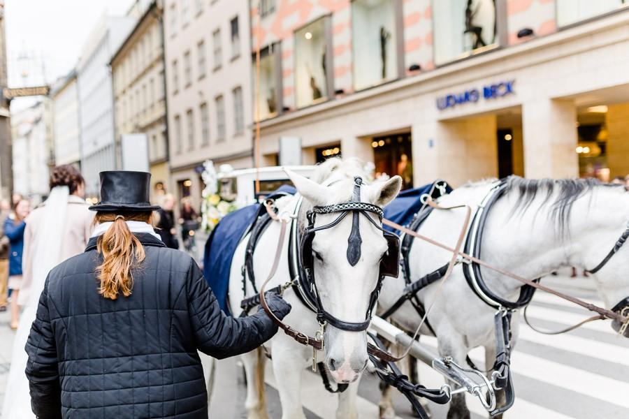 Hochzeitskutsche mit weißen Pferden vor dem Rathaus München