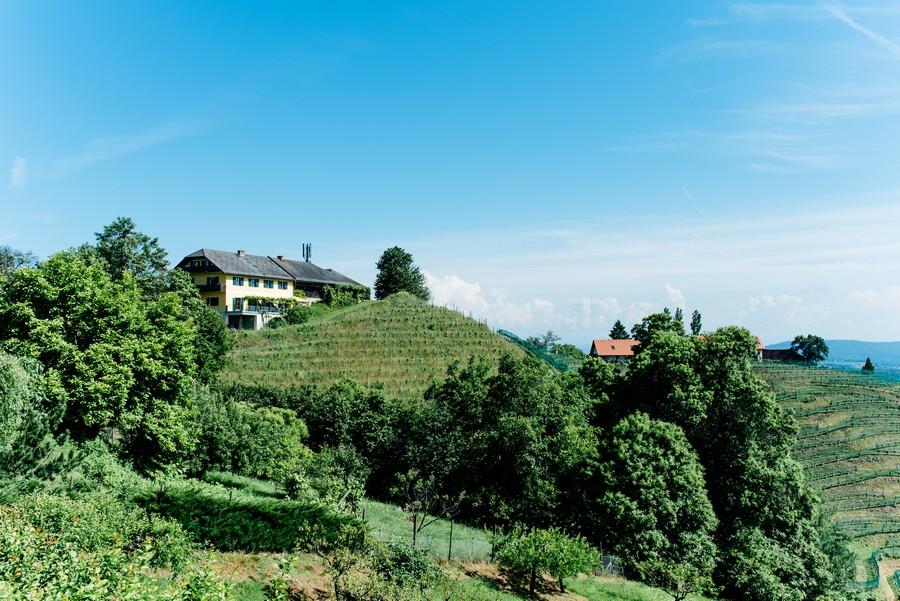 hochzeit-tracht-dirnl-beige-rosen-monika-schweighardt-1